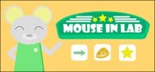 Mouse in Lab