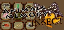 Animals Memory: Insect