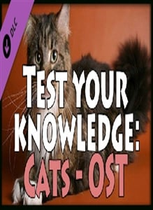 Test your knowledge: Cats - OST