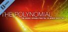 Polynomial Teaser