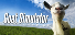 Completed Game: Goat Simulator for 2,818 TrueSteamAchievement points (inc DLC)